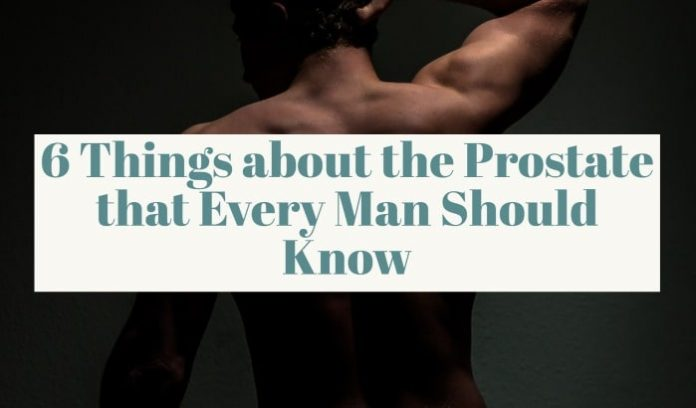 6 Things about the Prostate that Every Man Should Know
